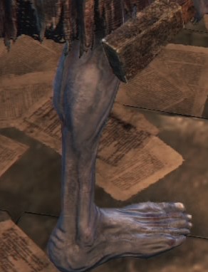 False Eyes Mergo's Attendant Leg