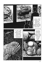 The Thing That Drifted Ashore by Junji Ito - page 6