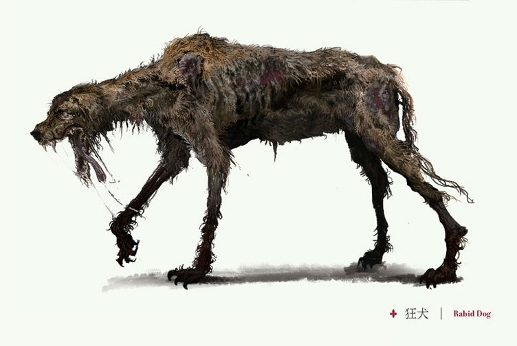 Rabid Dog Video