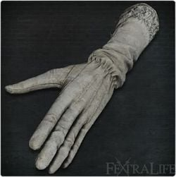 surgical_long_gloves.jpg